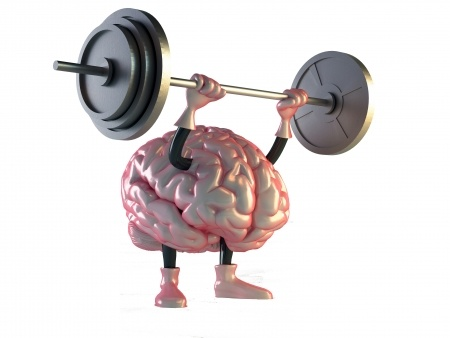 Hersenen+halter.jpg